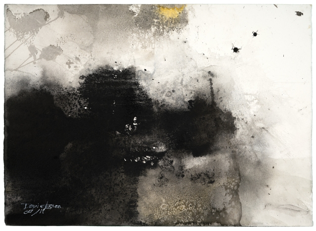 Vicente Dopico-Lerner, After fog, 2018, Ink on paper, 22 x 30""